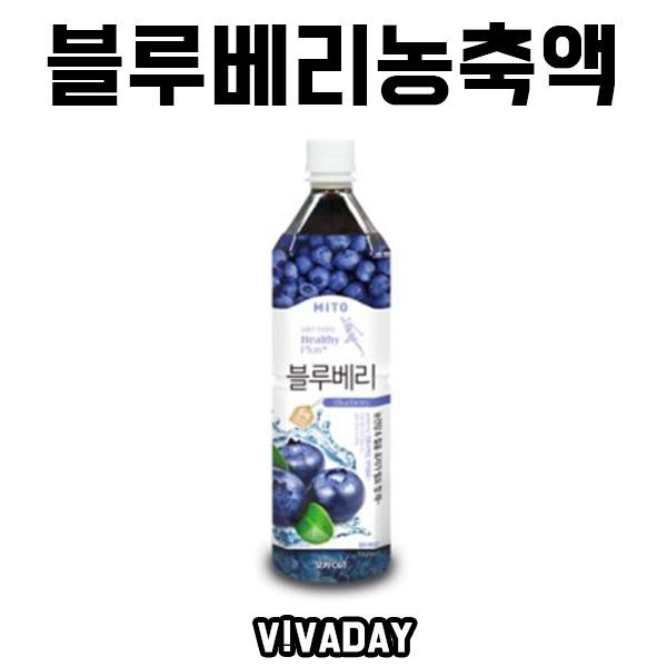 [ANY] 블루베리 음료베이스 농축액 1020ml 2개